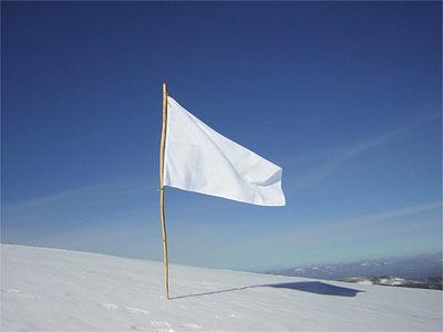 Siniristitön Suomen lippu.